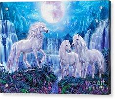 Night Horses Acrylic Print by Jan Patrik Krasny