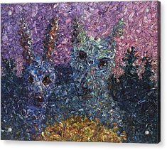 Night Offering Acrylic Print by James W Johnson