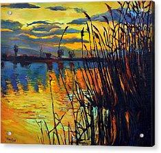 Night Scenery Acrylic Print by Ivailo Nikolov