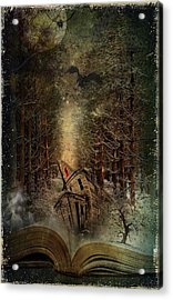 Night Story Acrylic Print by Svetlana Sewell