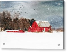 Night's Snow Dust Acrylic Print by Mary Timman