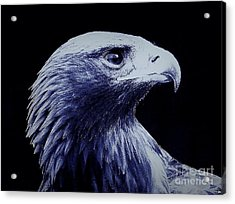 Nightwatcher Acrylic Print by Andy Heavens
