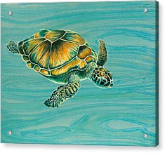 Nik's Turtle Acrylic Print by Emily Brantley