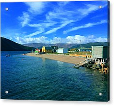 Norris Point Newfoundland Acrylic Print by Patricia Januszkiewicz