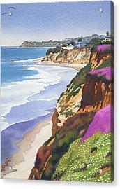 North County Coastline Acrylic Print by Mary Helmreich