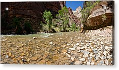 North Fork Of The Virgin River, Zion Acrylic Print by Panoramic Images