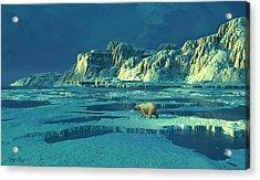 Northern Lights Acrylic Print by Dieter Carlton