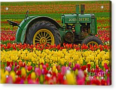Nothing Runs Like A Deere Acrylic Print by Nick  Boren
