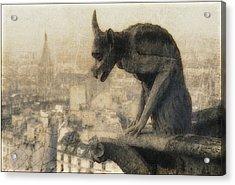 Notre Dame Cathedral Gargoyle Acrylic Print by Douglas MooreZart