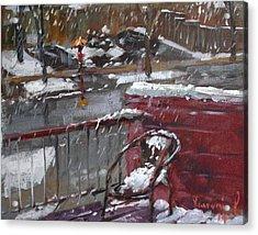 First Snowfall Nov 17 2014 Acrylic Print by Ylli Haruni