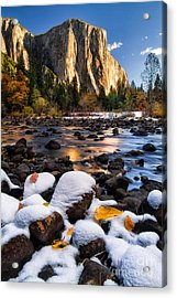 November Morning Acrylic Print by Anthony Bonafede