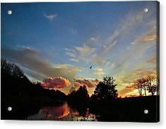 November Sunset Acrylic Print by Catherine Davies
