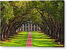 Oak Alley Acrylic Print by Steve Harrington