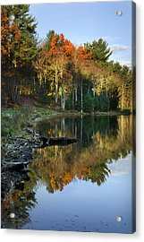 Oakley Corners State Forest Acrylic Print by Christina Rollo