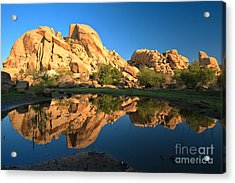 Oasis Reflections Acrylic Print by Adam Jewell