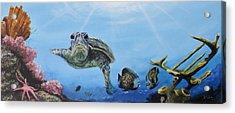 Ocean Life Acrylic Print by Donna Tuten
