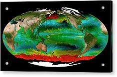 Ocean Phytoplankton Types Acrylic Print by Mit Darwin Project/ecco2/mitgcm/nasa