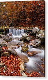 October Stream Acrylic Print by Mircea Costina Photography