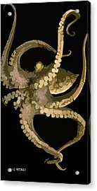 Octopus In Flight Acrylic Print by George Pedro