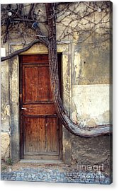 Oh Bended Tree Acrylic Print by Rebecca Pickrel