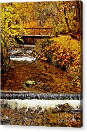 Okanagan Autumn Acrylic Print by Kathy Bassett