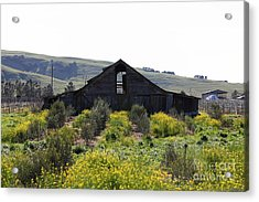 Old Barn In Sonoma California 5d22235 Acrylic Print by Wingsdomain Art and Photography