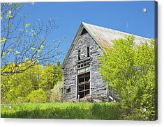 Old Barn In Spring Maine Acrylic Print by Keith Webber Jr