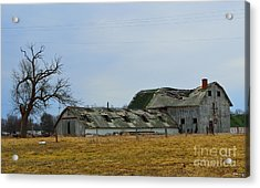 Old Barns In The Heartland Acrylic Print by Alys Caviness-Gober