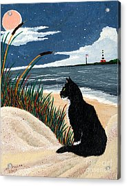 Old Cat And The Sea Acrylic Print by Edward Fuller