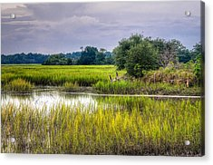 Old Fence Line At The Whale Branch Acrylic Print by Scott Hansen