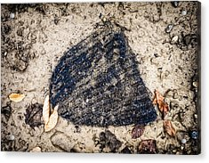 Old Forgotten Wool Cap Lying On The Ground Acrylic Print by Matthias Hauser