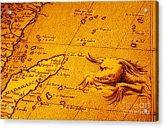 Old Map Of Africa Madagascar With Sea Monster Acrylic Print by Colin and Linda McKie