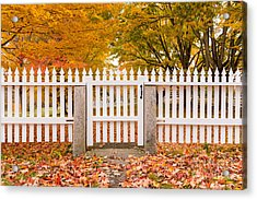 Old New England White Picket Fence Acrylic Print by Edward Fielding
