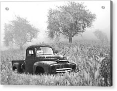 Old Pick Up Truck Acrylic Print by Debra and Dave Vanderlaan