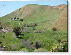 Old Rose Hill Cemetery Atop The Rolling Hills Landscape Of The Black Diamond Mines California 5d2231 Acrylic Print by Wingsdomain Art and Photography