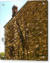 Old Stone And Creepies Acrylic Print by Lynne and Don Wright