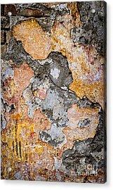 Old Wall Abstract Acrylic Print by Elena Elisseeva