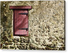 Old Wall And Door Acrylic Print by Olivier Le Queinec