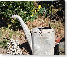 Old Watering Can Acrylic Print by Carolyn Ricks