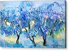 Olive Trees In A Tuscan Garden  Acrylic Print by Trudi Doyle
