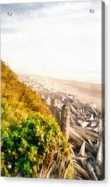 Olympic Peninsula Driftwood Acrylic Print by Michelle Calkins