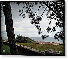 Omaha Beach Under Trees Acrylic Print by Joan  Minchak