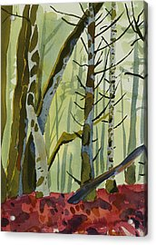 On Ivy Hill Acrylic Print by Alexandra Schaefers