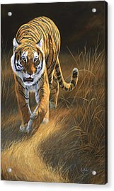 On The Move Acrylic Print by Lucie Bilodeau