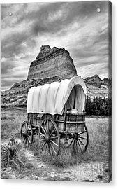 On The Oregon Trail 3 Bw Acrylic Print by Mel Steinhauer