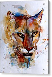 On The Prowl Acrylic Print by Steven Ponsford
