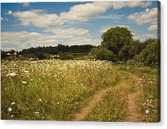On The Summer Meadow II. Russia Acrylic Print by Jenny Rainbow