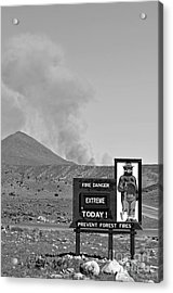 Only You Can Prevent Forest Fires  Acrylic Print by Juls Adams