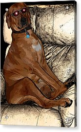One Cool Dog Acrylic Print by Mim White