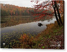 One Of The Worcester Ponds Acrylic Print by Charles Kozierok